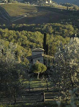 Cavalli Estate