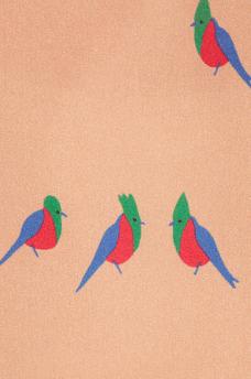 MarcbyMarcJacobs_detail_vogelprint