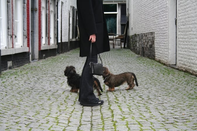 Back home in Maastricht met Pippa