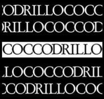 Coccodrillo for men