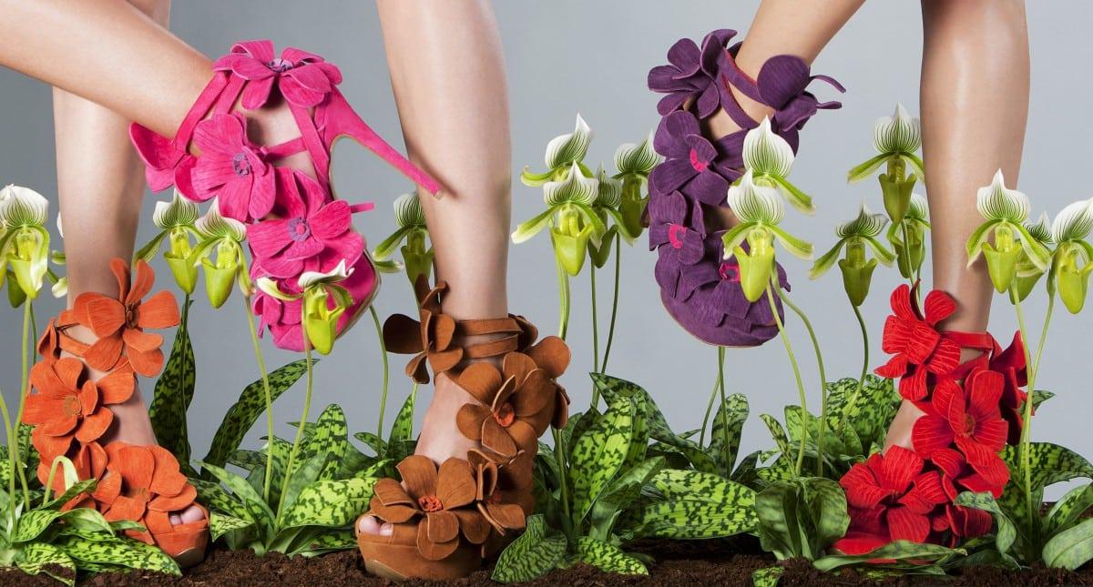 Orchideeën aan je voeten met Jan Jansen