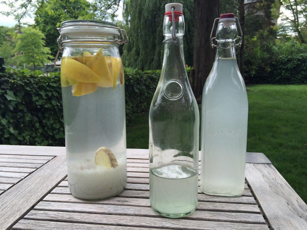 Verslaafd aan Klien's limonade kefir