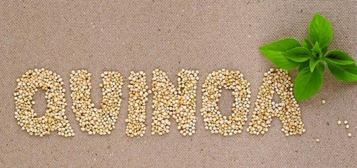 Quinoa-kutjes, wie zijn dat dan?!