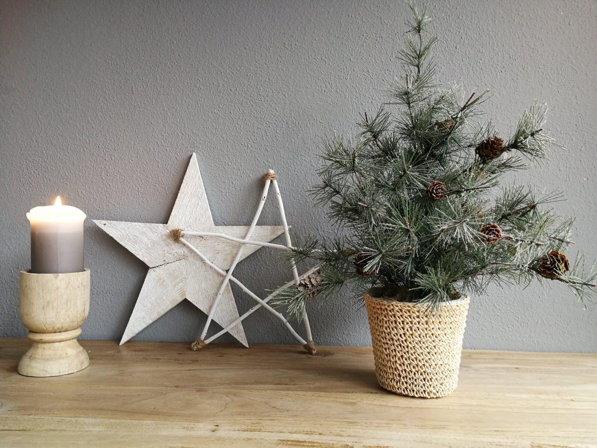 DIY: Kerstster van takken