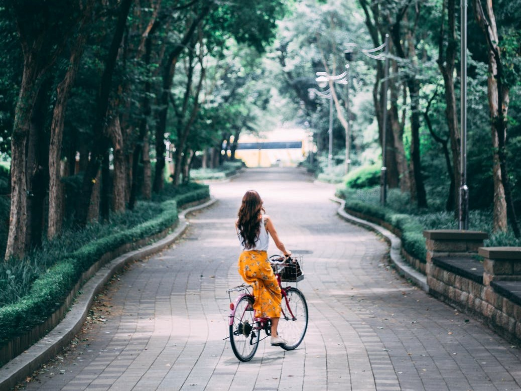 De mooiste fietsroutes door Nederland