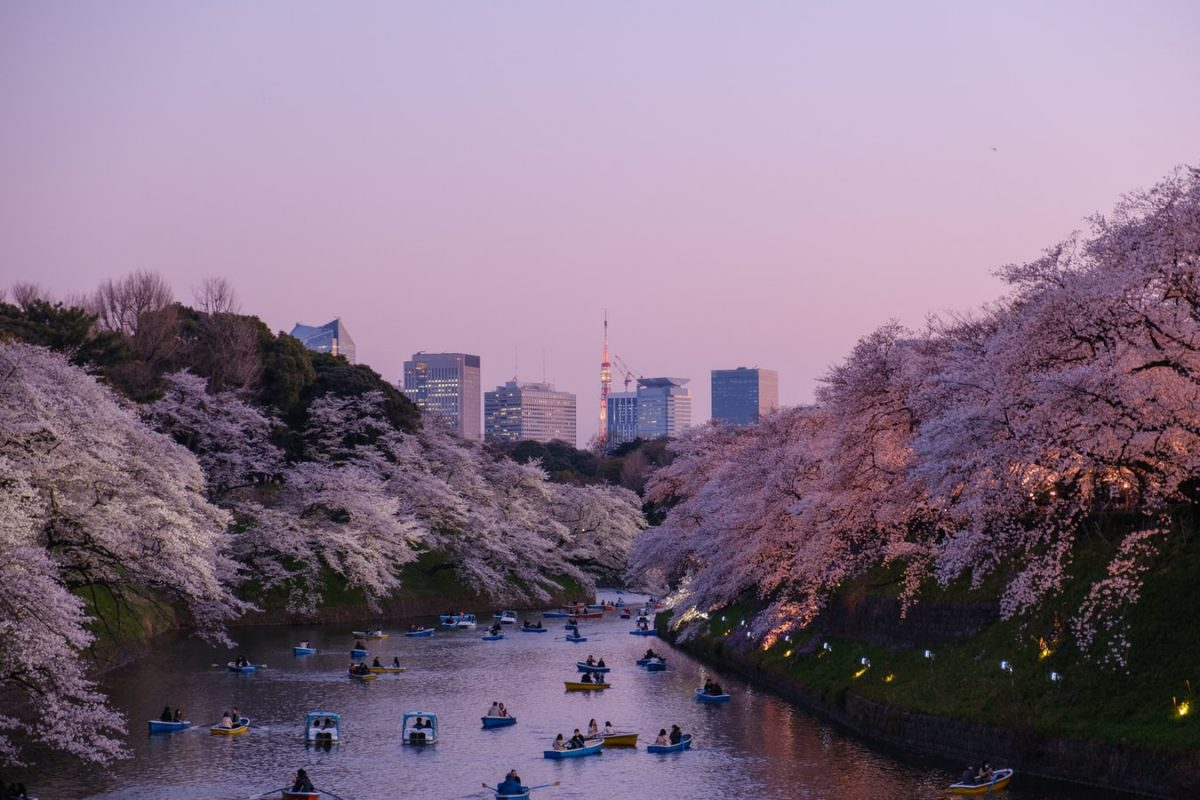 Backpacken Japan: Route en Tips