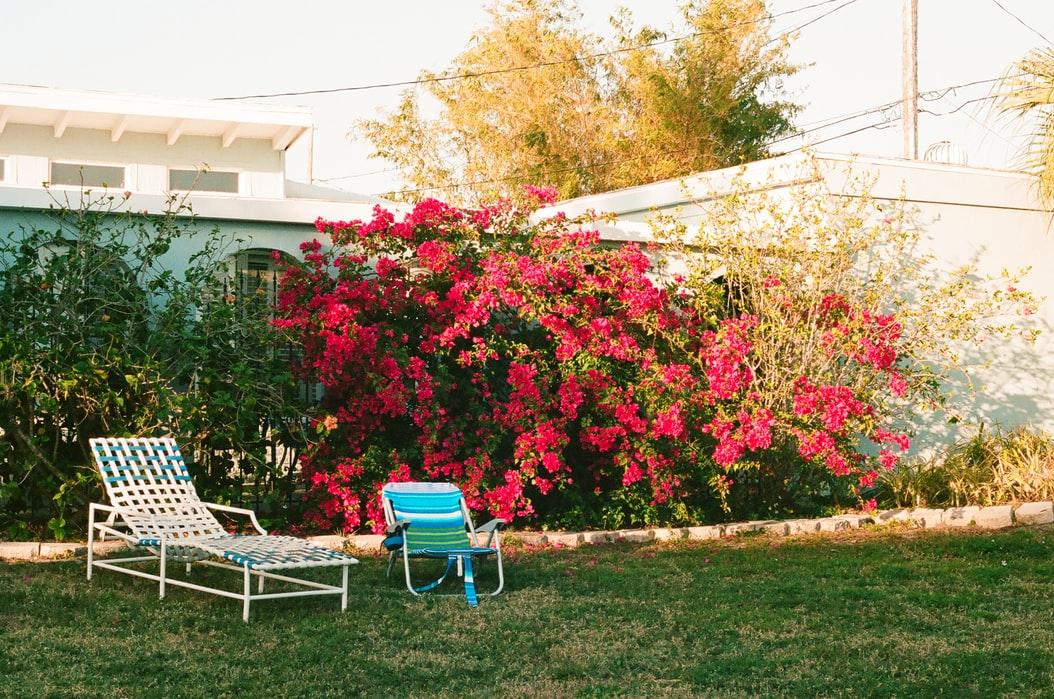 De tuin zomerklaar maken: zo pak je dat aan